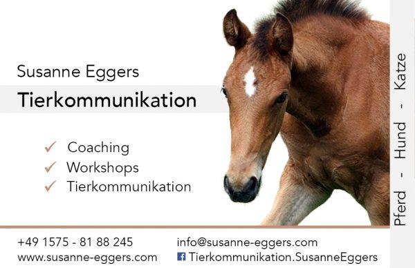 Fohlen auf Visitenkarte mit Kontaktdaten von Tierkommunikatorin Susanne Eggers