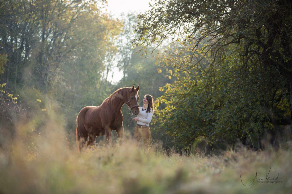 Braunes Araber Pferd steht mit Tierkommunikatorin in märchenhaftem Wald