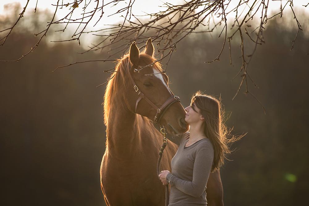 Fuchsfarbener Shagya Araber kuschelt mit Susanne Eggers und pustet langsam Luft durch die Nüstern